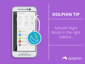 DolphinTip_NightMode